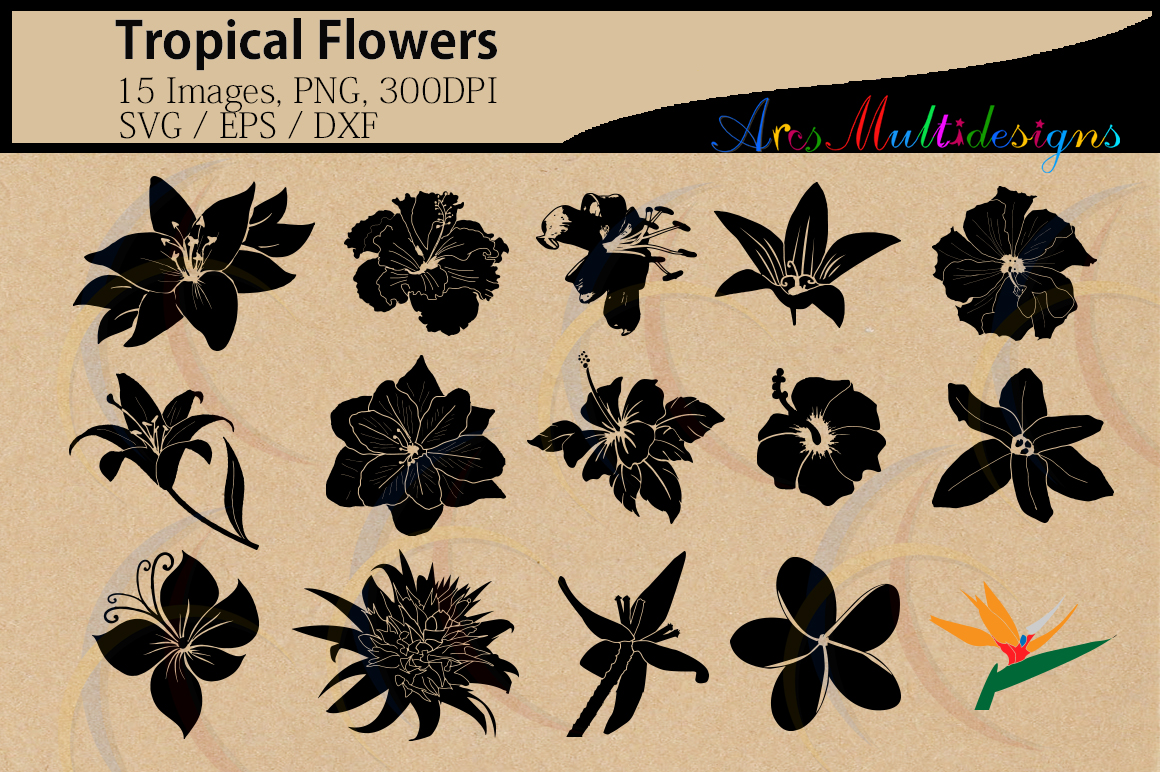 Print on Demand: Tropical Flowers Silhouette Graphic Crafts By Arcs Multidesigns - Image 1