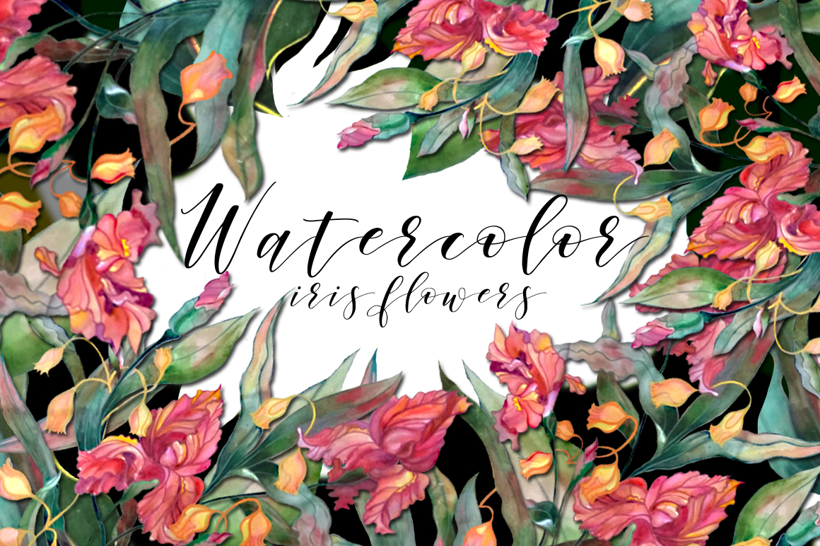 Watercolor Iris Flowers Set Graphic Illustrations By alisared87