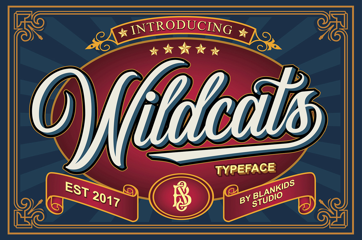 Print on Demand: Wildcats Manuscrita Fuente Por Blankids Studio