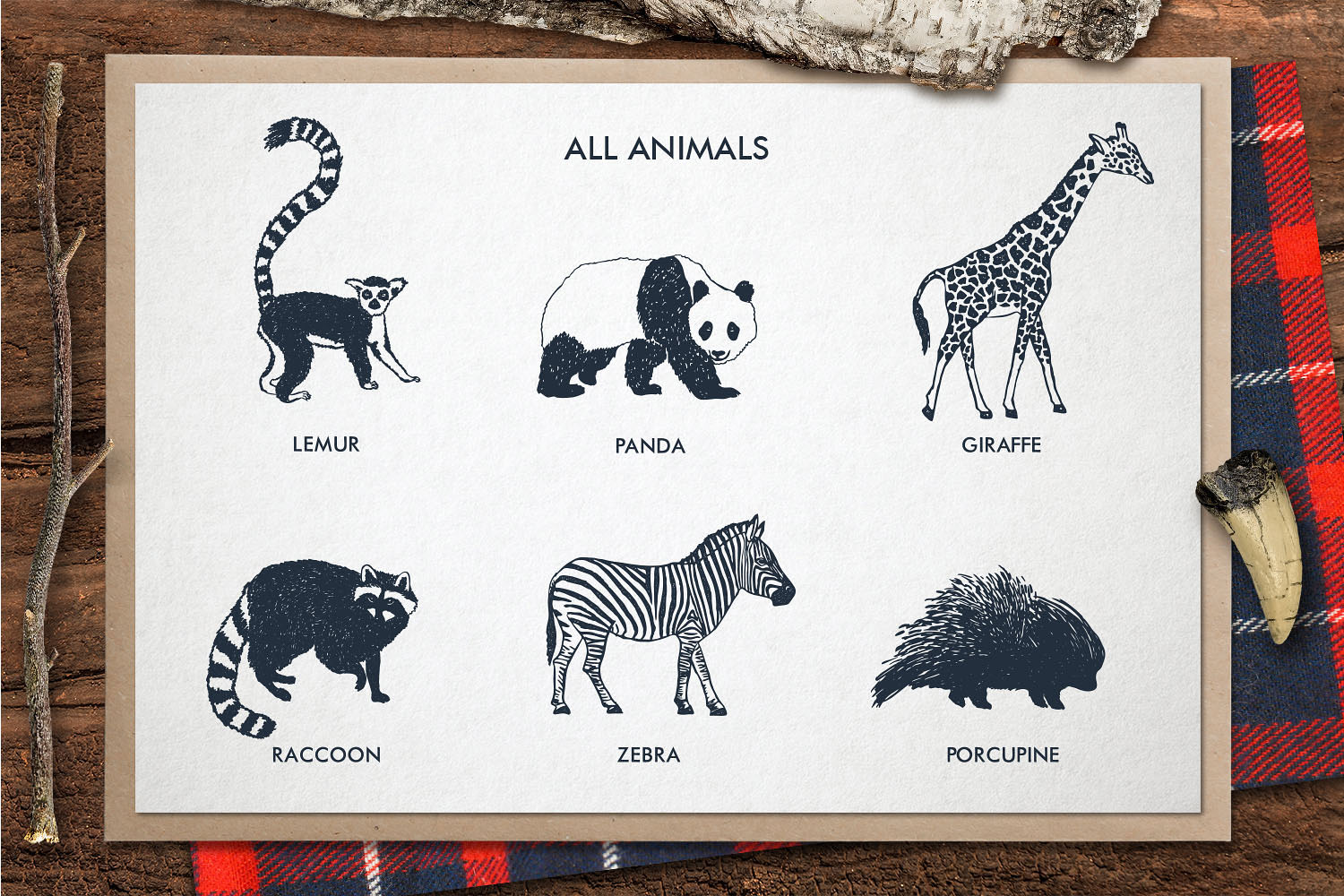 Zoonimals - Set with Hand Drawn Zoo Animals Graphic By Cosmic Store Image 4