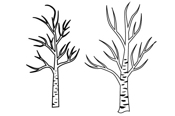 Download Free Bare Birch Trees Svg Cut File By Creative Fabrica Crafts Creative Fabrica for Cricut Explore, Silhouette and other cutting machines.