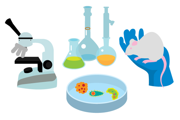 Download Free Science Illustrations Svg Cut File By Creative Fabrica Crafts for Cricut Explore, Silhouette and other cutting machines.