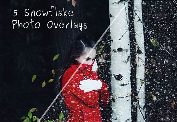 5 Schneeflocken Foto-Overlays Grafik von Creative Fabrica Freebies