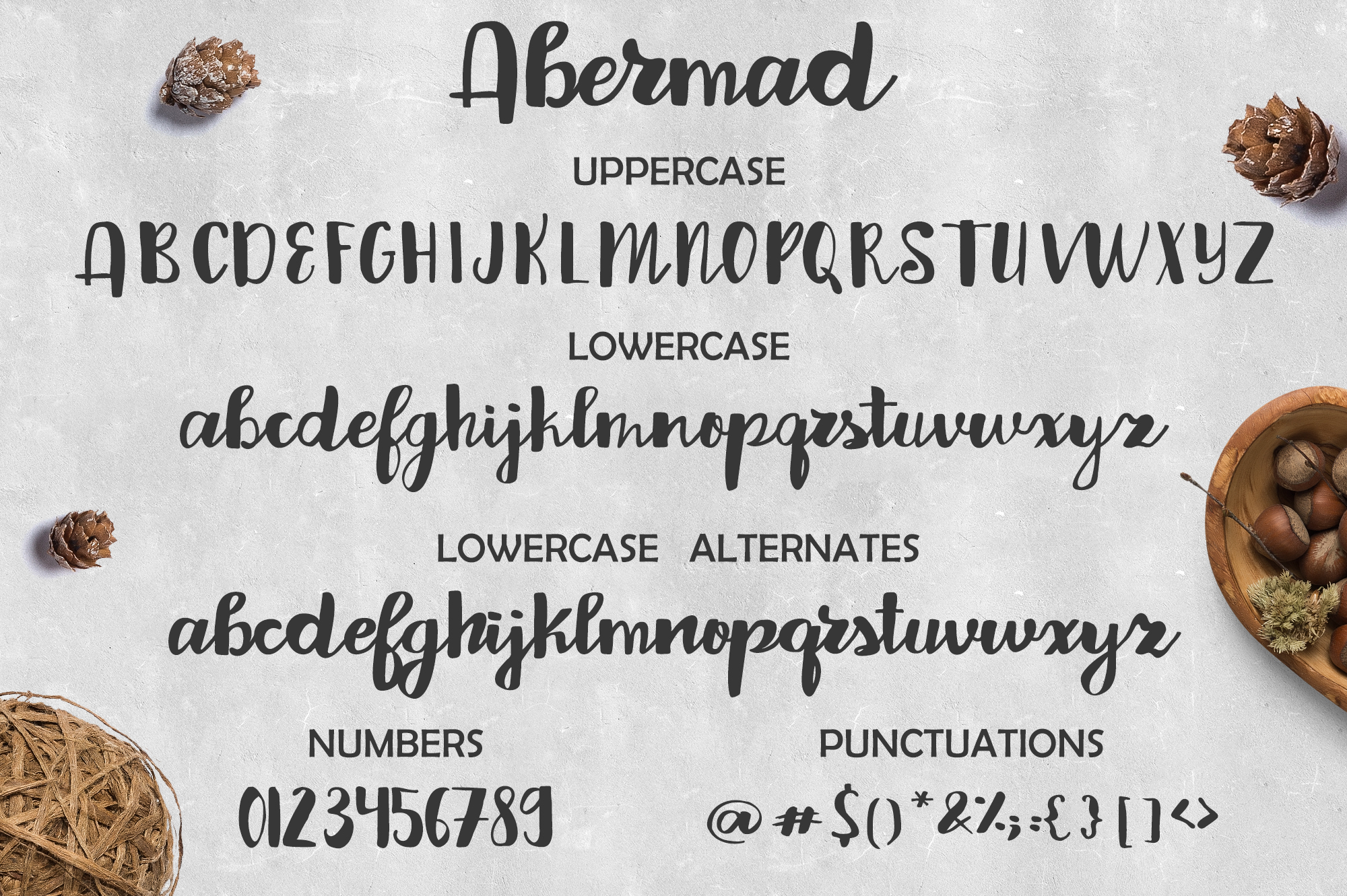 Print on Demand: Abermad Script & Handwritten Font By tregubova.jul - Image 9