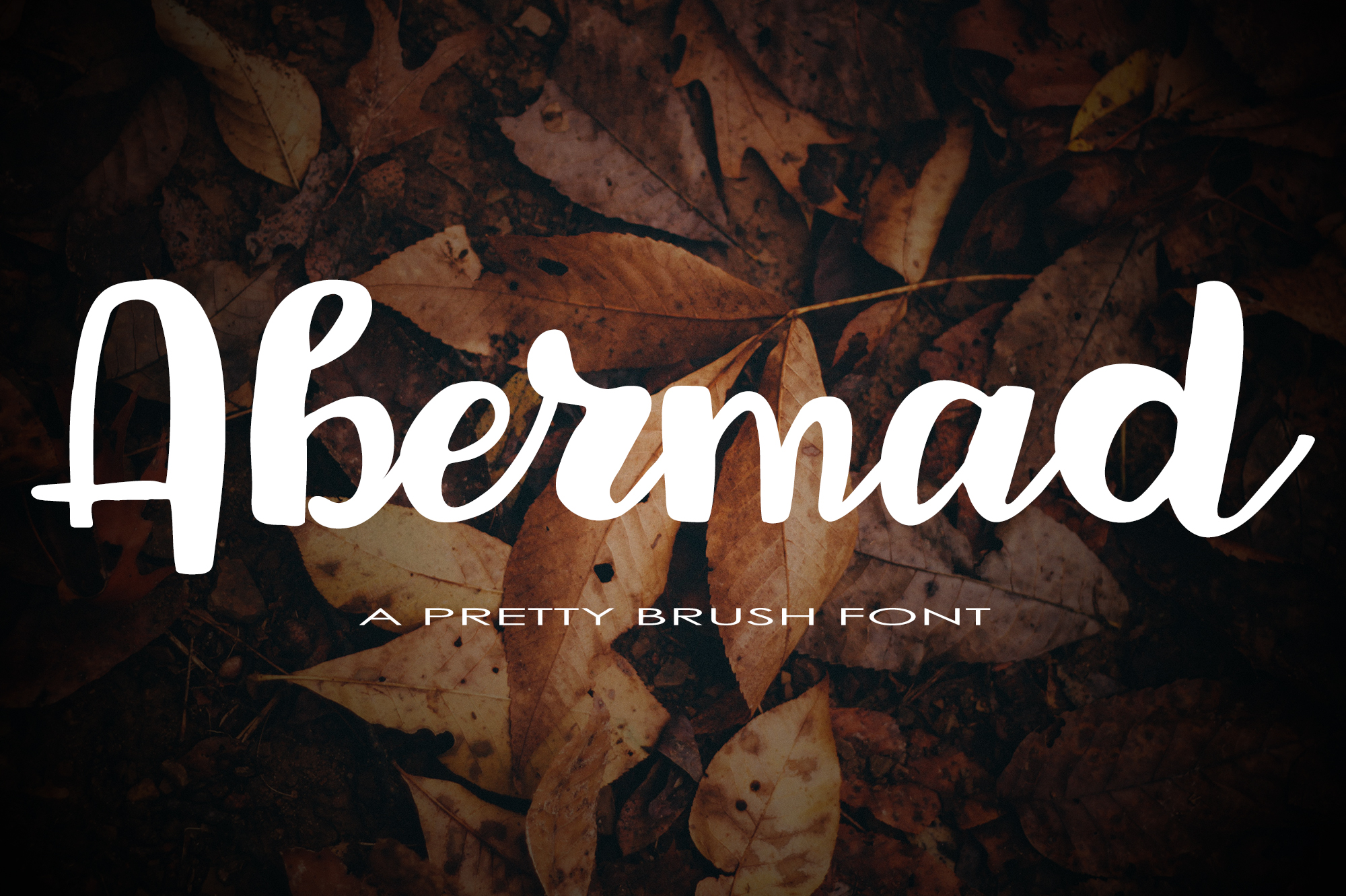 Print on Demand: Abermad Script & Handwritten Font By tregubova.jul - Image 1