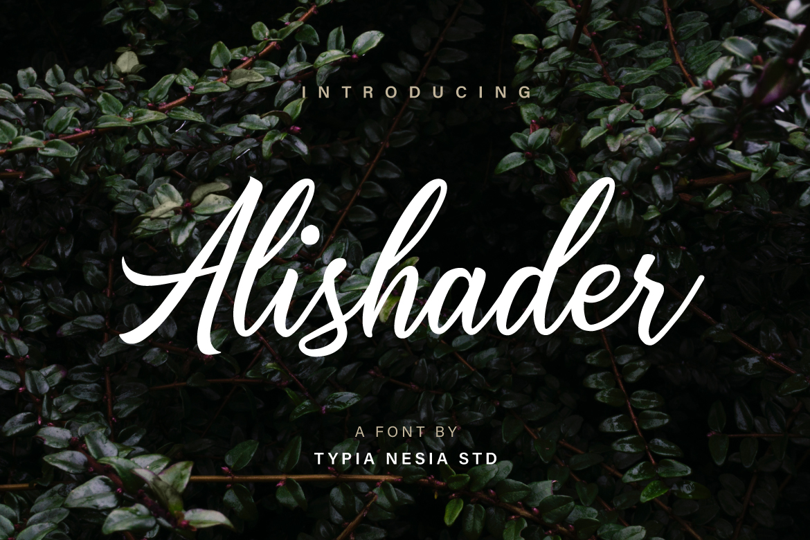 Print on Demand: Alishader Script & Handwritten Font By Typia Nesia
