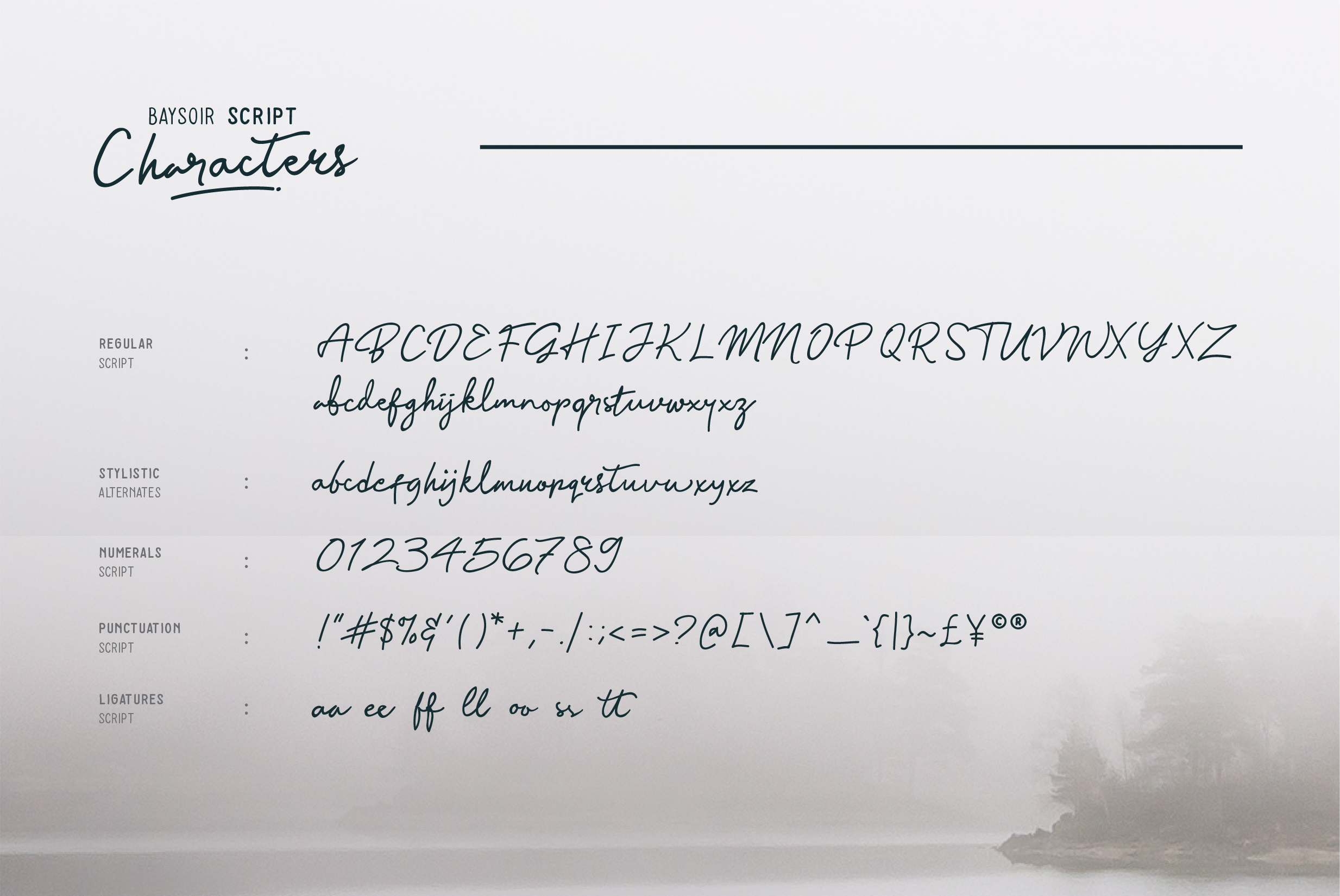 Print on Demand: Baysoir Script & Handwritten Font By Pana Type - Image 7