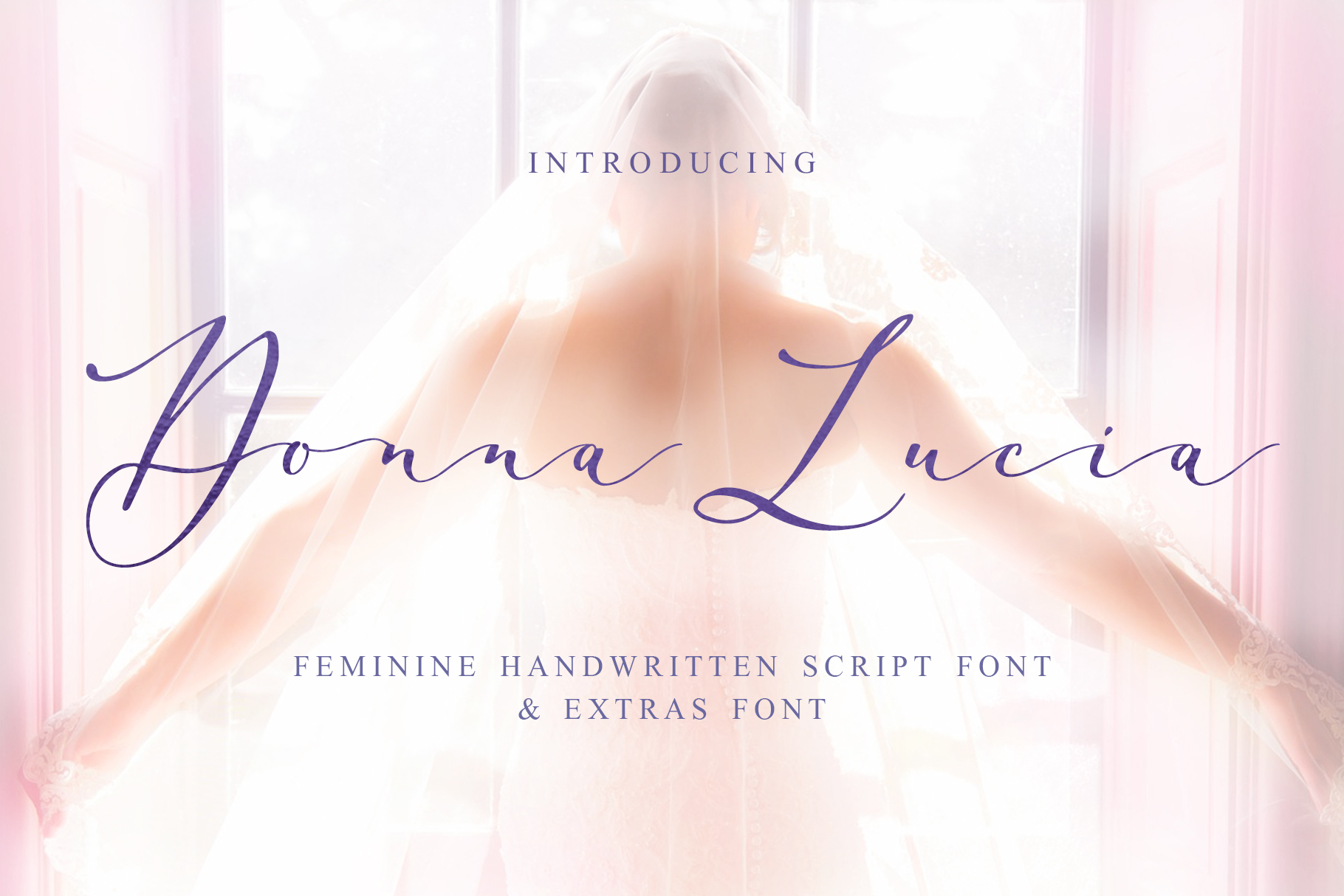 Print on Demand: Donna Lucia Script & Handwritten Font By Iradvilyuk