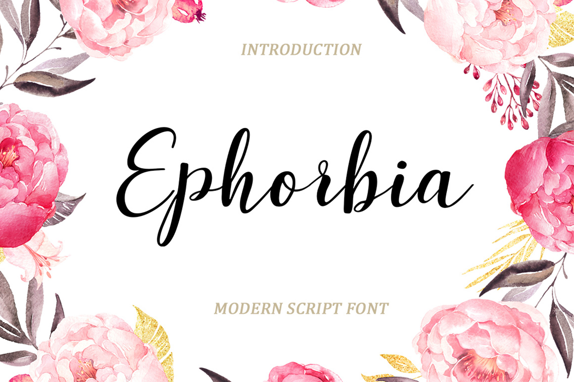 Print on Demand: Ephorbia Script & Handwritten Font By typehill