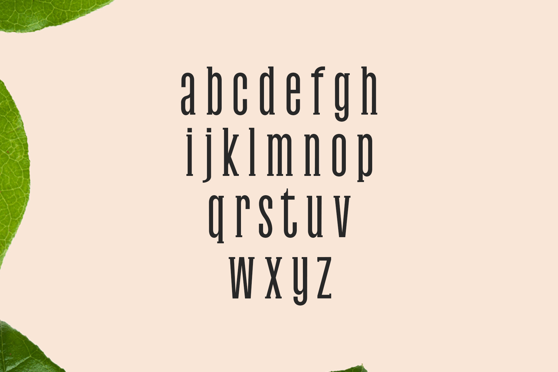 Print on Demand: Galvin Family Pack Slab Serif Font By Creative Tacos - Image 3
