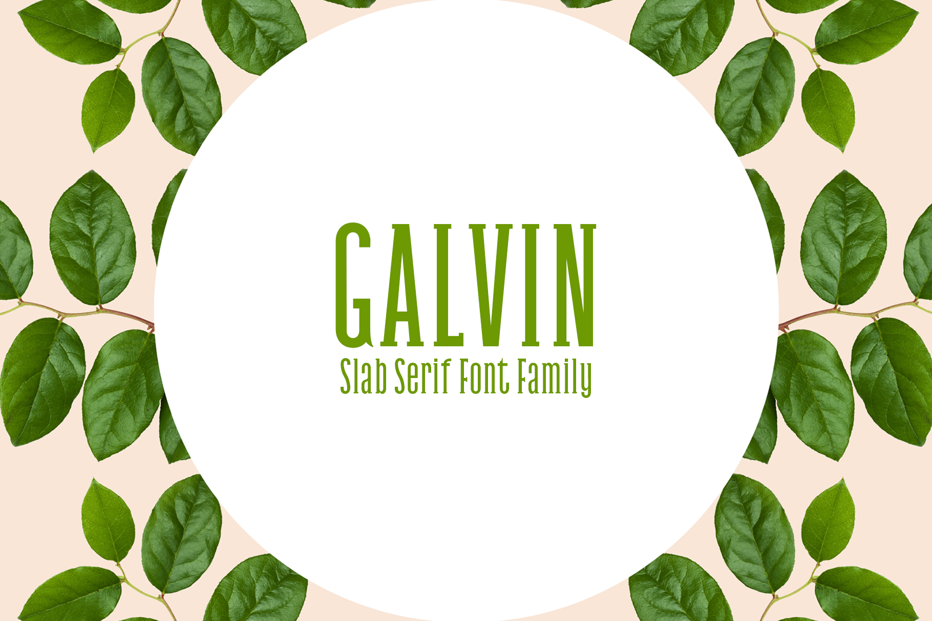 Print on Demand: Galvin Family Pack Slab Serif Font By Creative Tacos