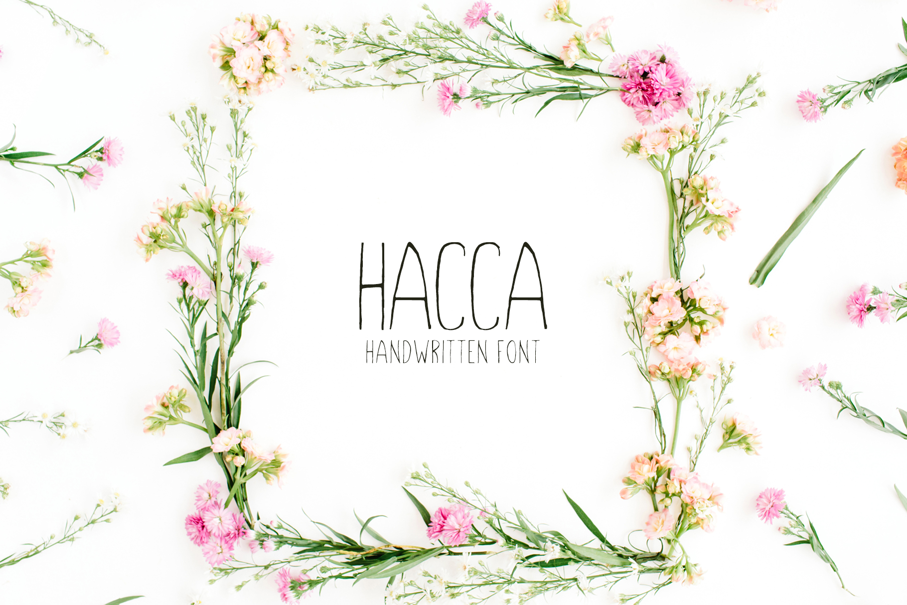 Hacca Sans Serif Font By Creative Tacos