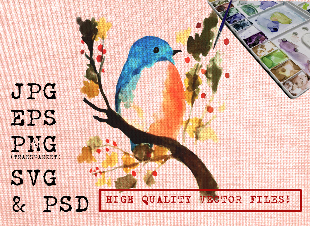 Little Blue Bird Watercolor Graphic Illustrations By Ambar Art