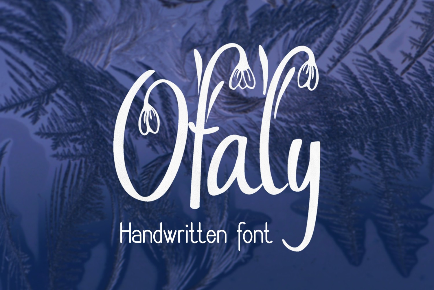 Print on Demand: Ofaly Script & Handwritten Font By Eva Barabasne Olasz