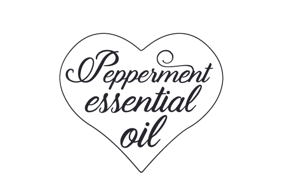 Download Free Pepperment Essential Oil Svg Cut File By Creative Fabrica Crafts for Cricut Explore, Silhouette and other cutting machines.