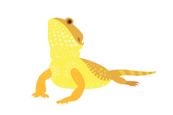 Download Free Pet Lizard Bearded Dragon Svg Cut File By Creative Fabrica for Cricut Explore, Silhouette and other cutting machines.