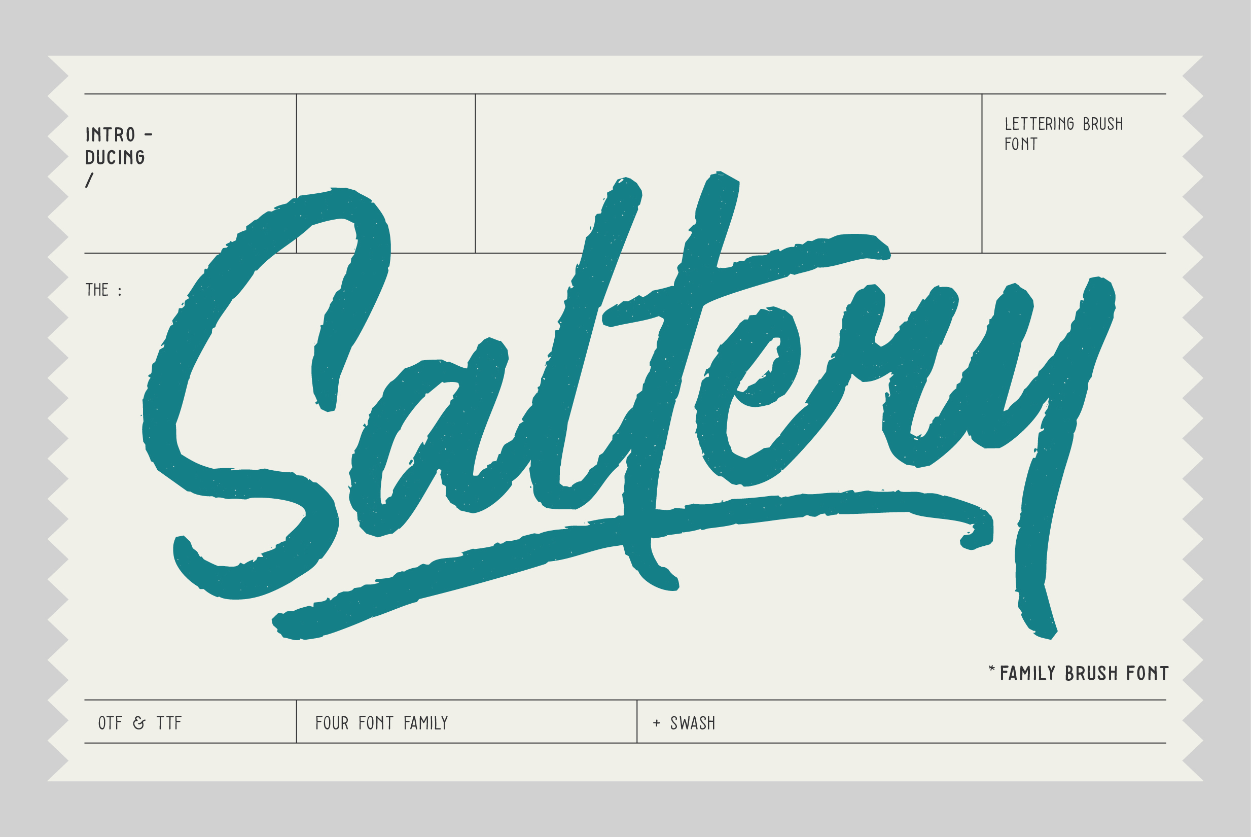 Print on Demand: Saltery Script & Handwritten Font By Pana Type