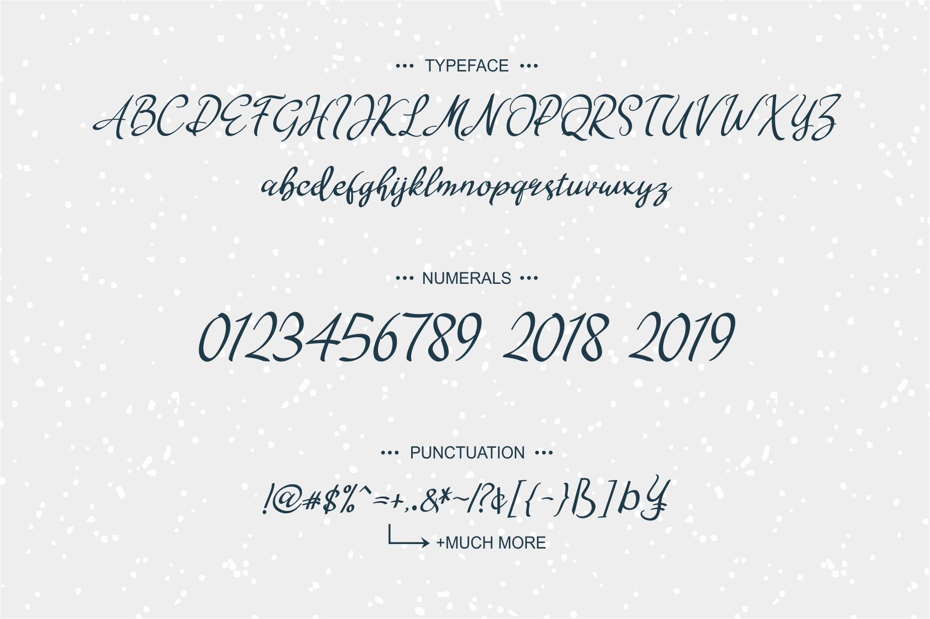 The Special Font By No Gravity Type Image 7