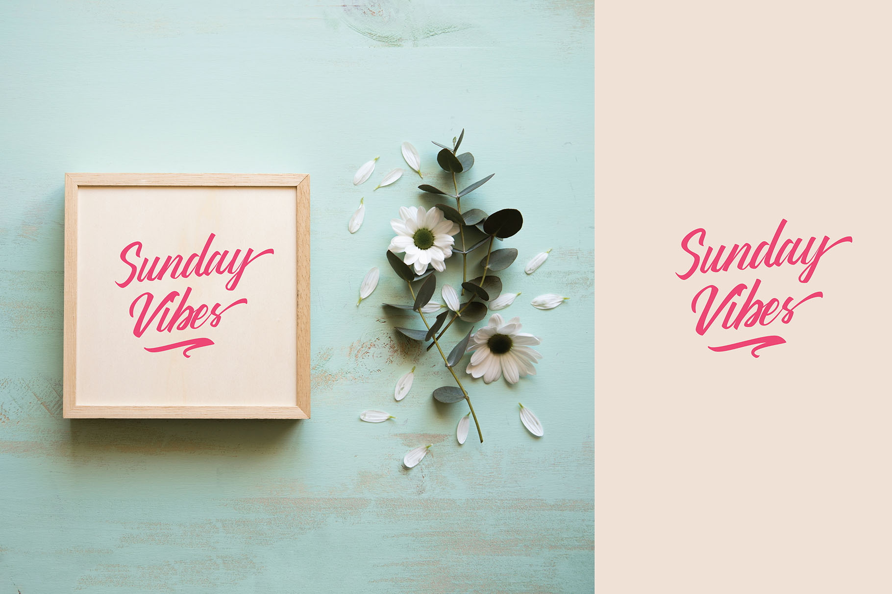 Print on Demand: Thipe Script & Handwritten Font By youthlabs - Image 4