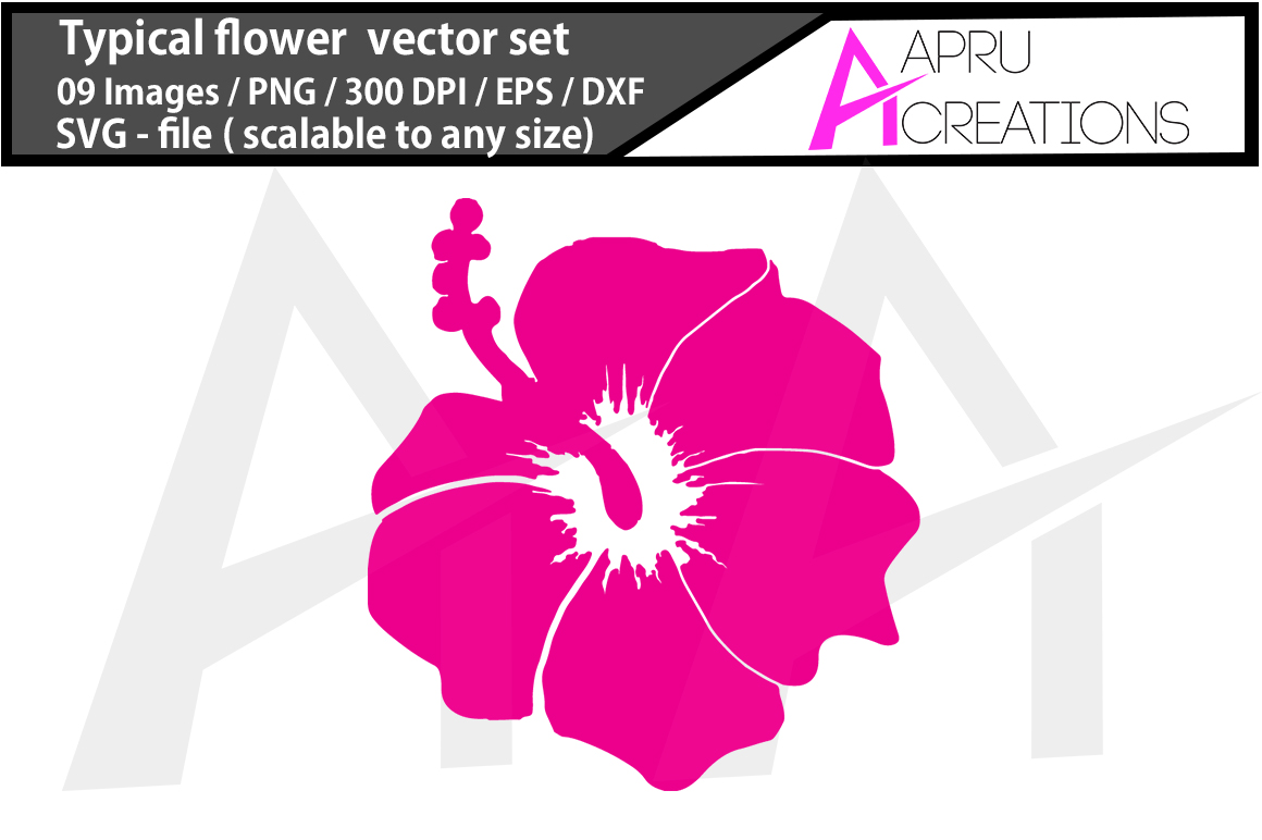 Download Free Typical Flower Svg Cut File Graphic By Aparnastjp Creative Fabrica for Cricut Explore, Silhouette and other cutting machines.