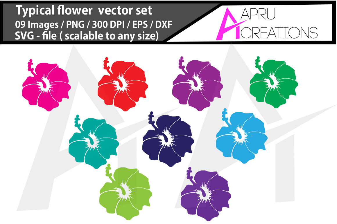 Download Free 1 Typical Flower Png Designs Graphics for Cricut Explore, Silhouette and other cutting machines.