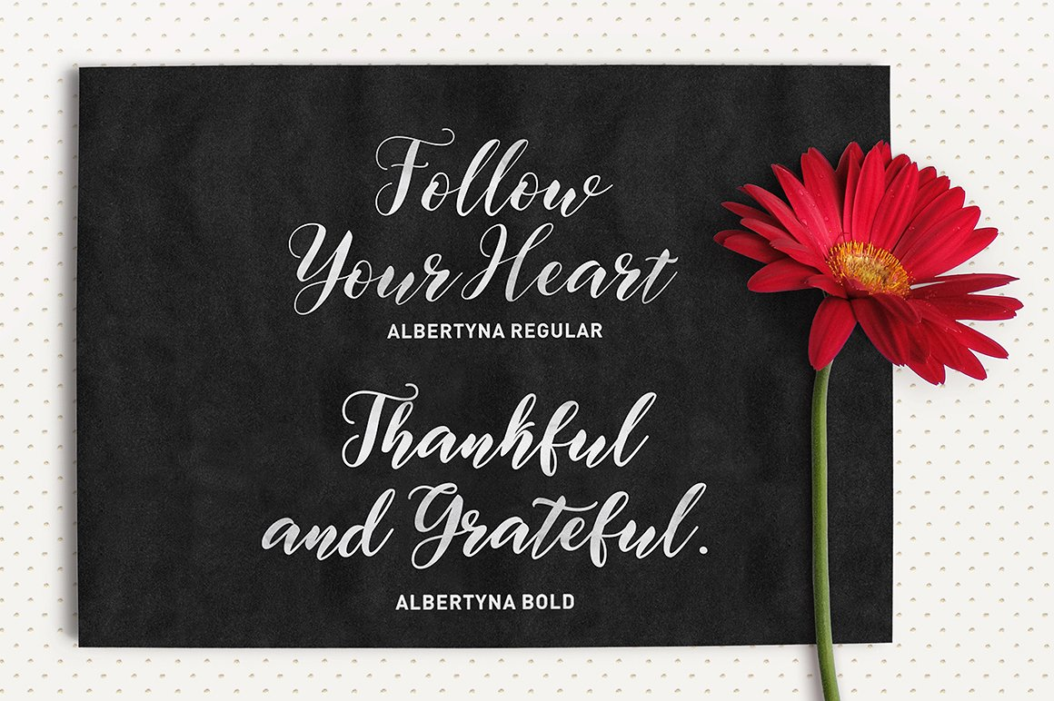 Albertyna Font By Solidtype Image 5