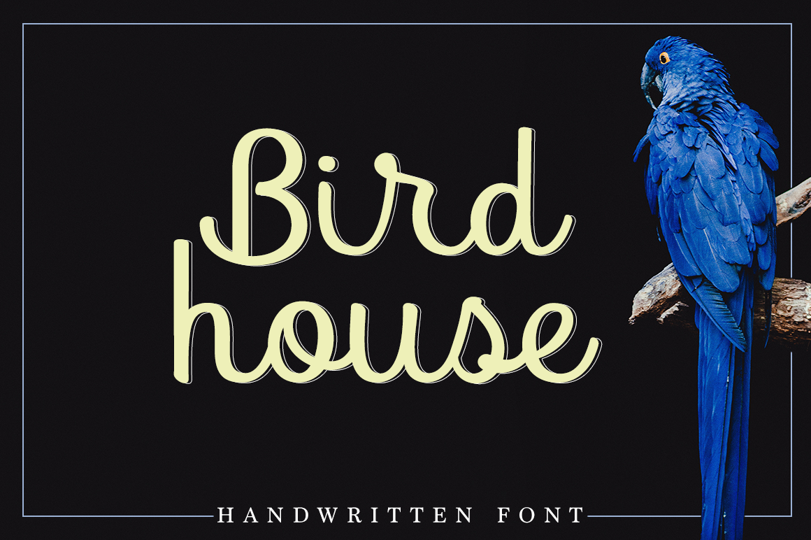 Print on Demand: Bird House Script & Handwritten Font By Pasha Larin - Image 1