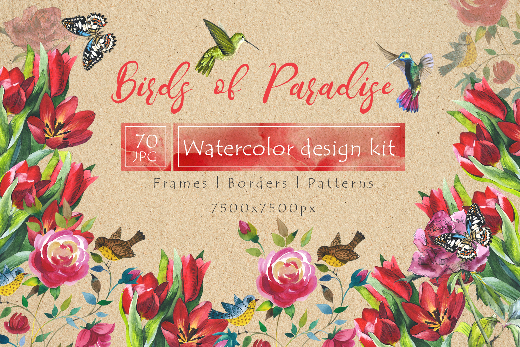 Print on Demand: Birds of Paradise JPG Watercolor Set Graphic Illustrations By MyStocks