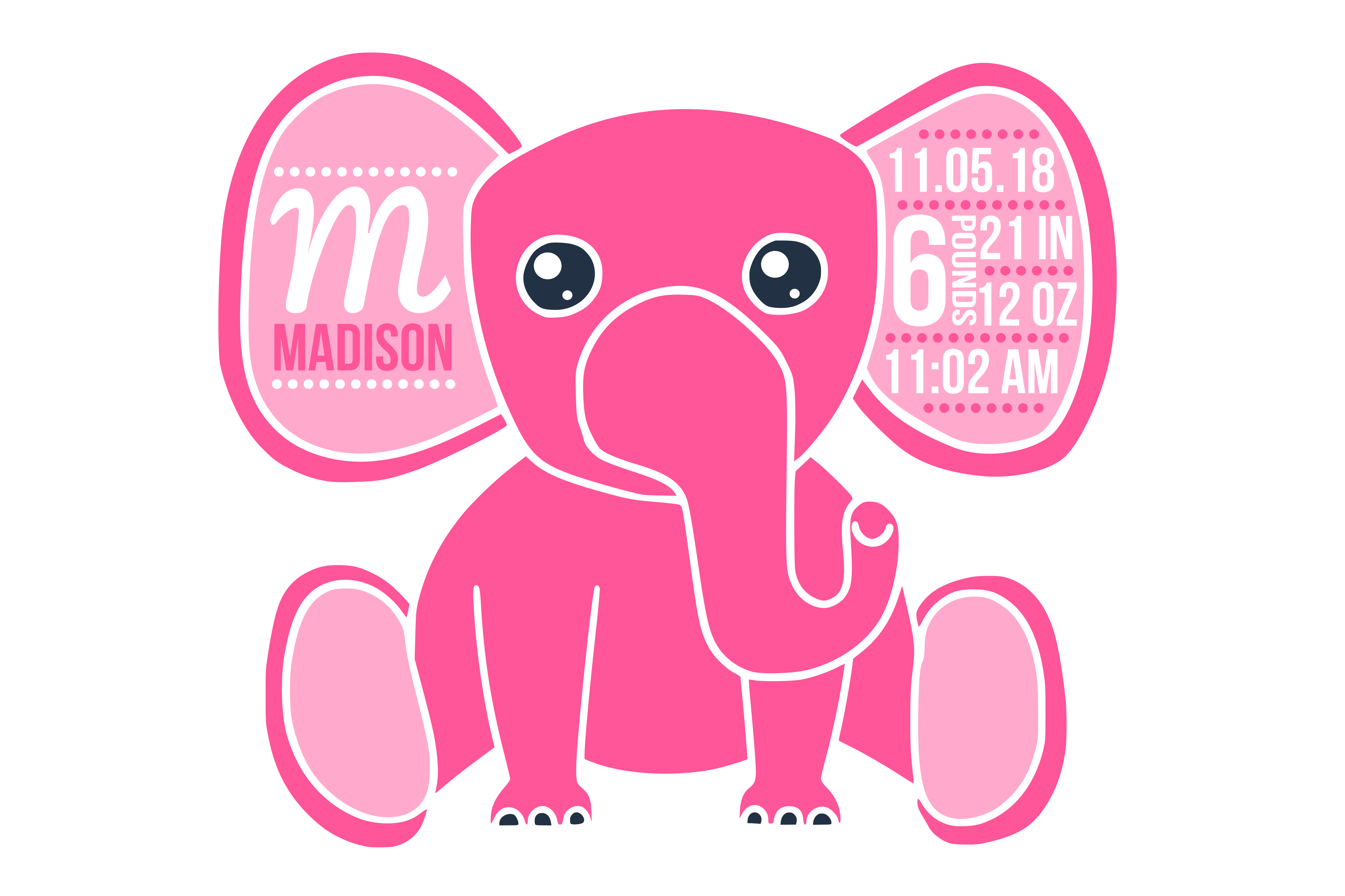 Birth Stats SVG Graphic By CrystalGiftsStudio
