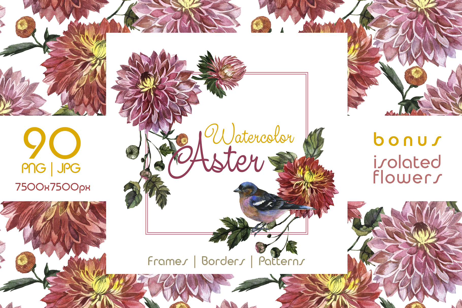 Print on Demand: Charming Asters PNG Watercolor Set Graphic Illustrations By MyStocks