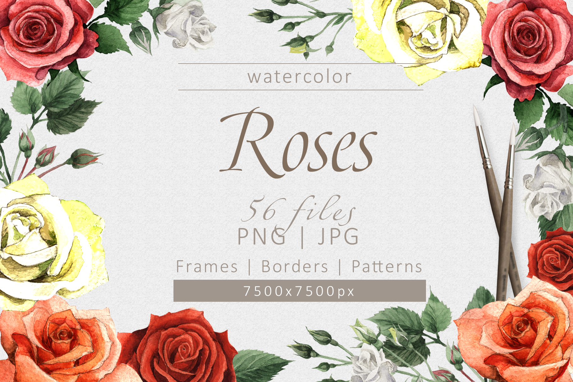 Print on Demand: Colorful Roses Watercolor Set Graphic Illustrations By MyStocks