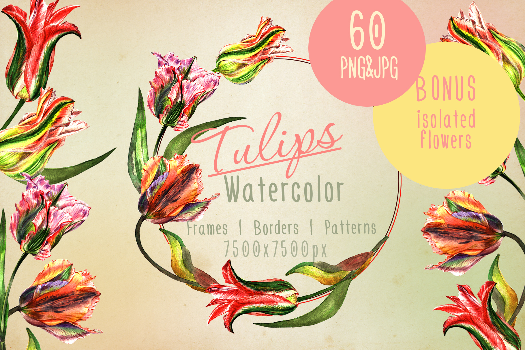 Print on Demand: Colorful Tulips JPG Watercolor Set Graphic Illustrations By MyStocks