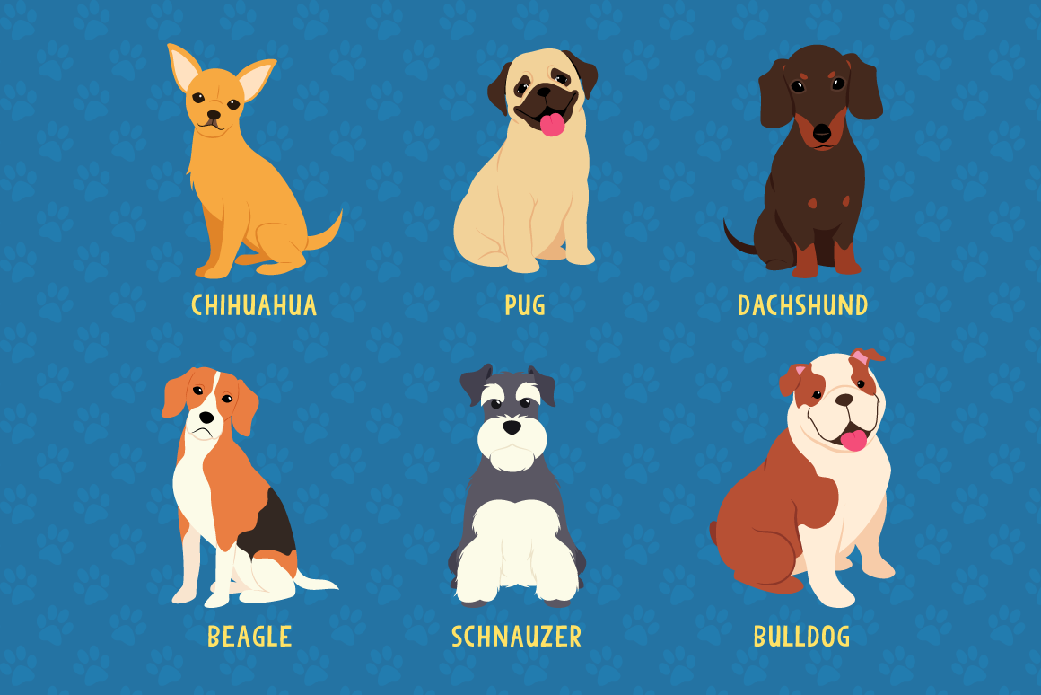Download Free Dog Breed Collection With 24 Unique Dogs Graphic By The Stock SVG Cut Files