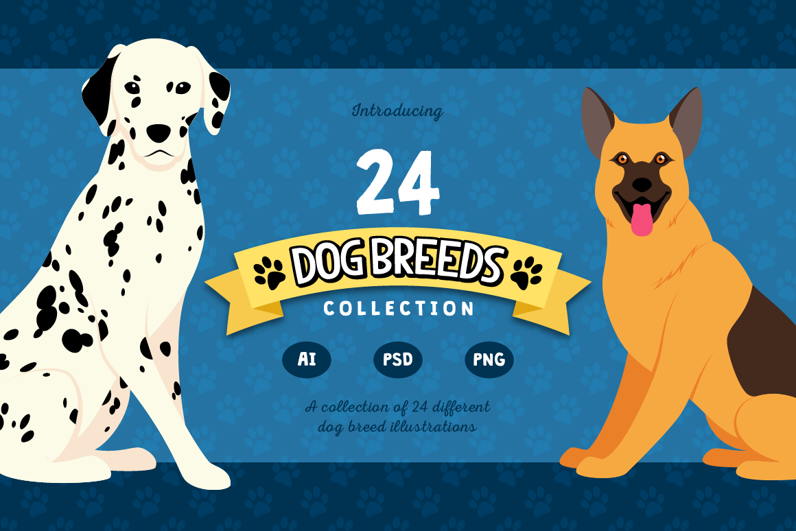 Dog Breed Collection with 24 Unique Dogs Graphic Illustrations By The Stock Croc
