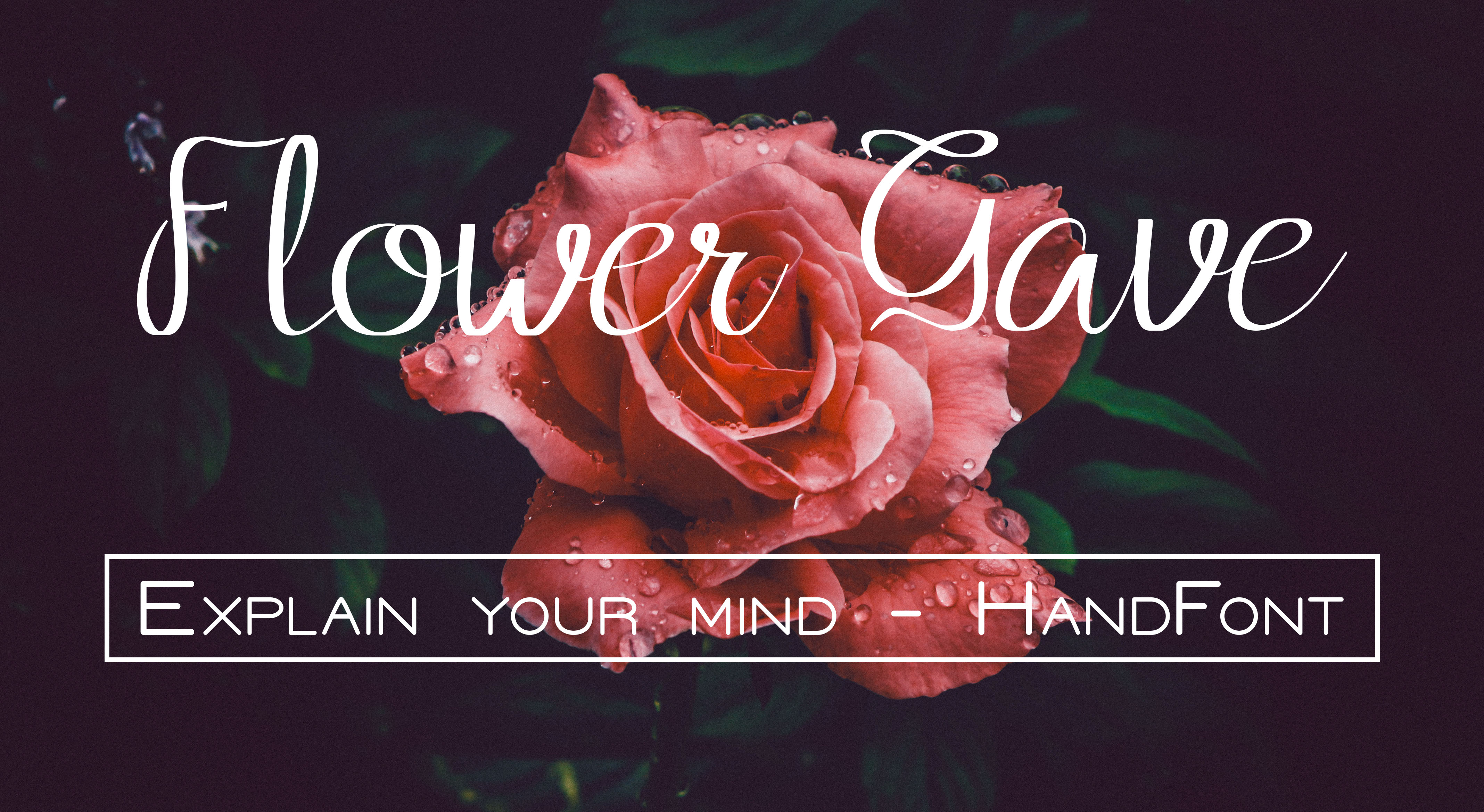 Print on Demand: Flower Grave Script & Handwritten Font By harizandy