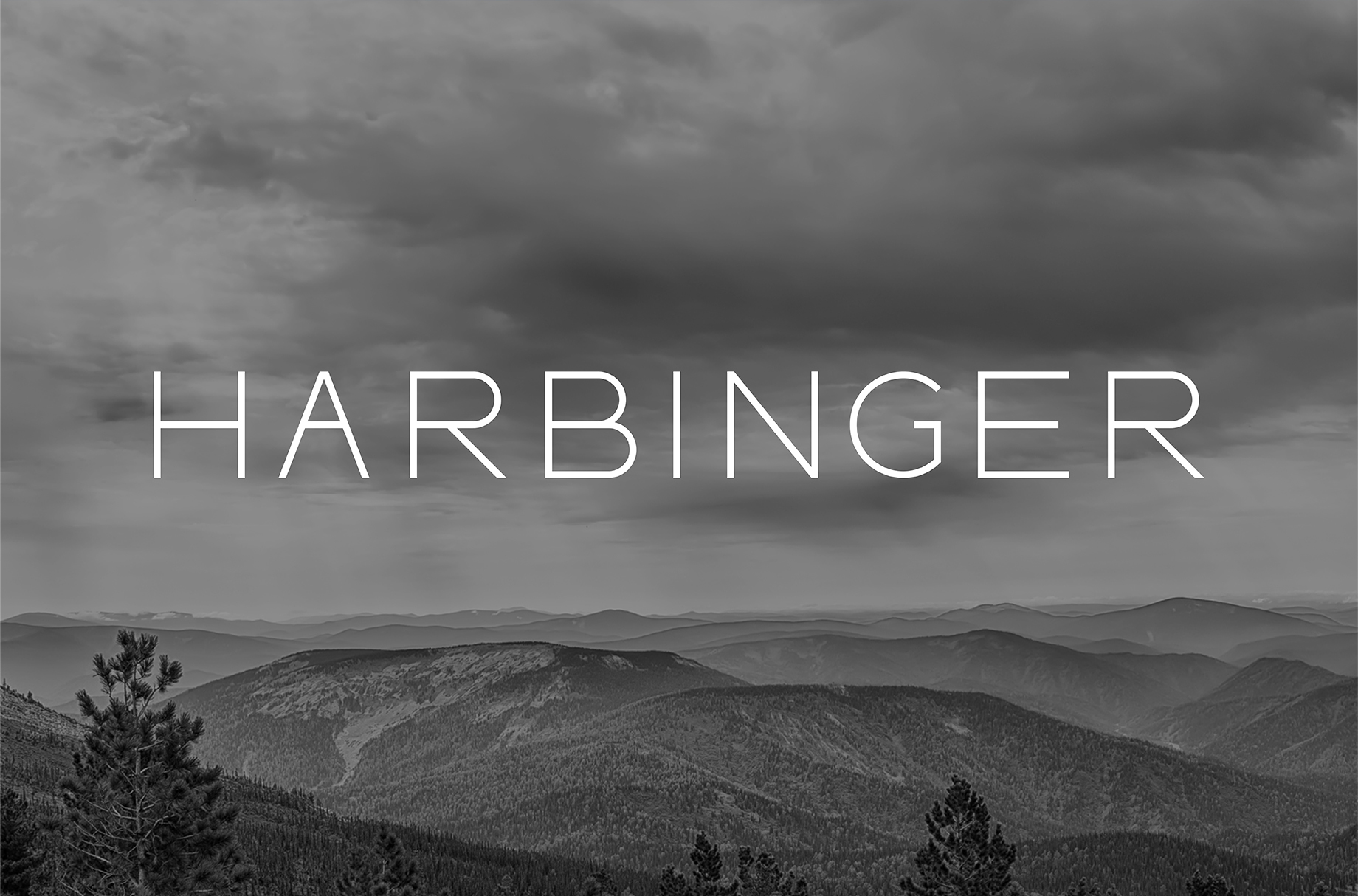 Print on Demand: Harbinger Sans Serif Fuente Por TasiPas