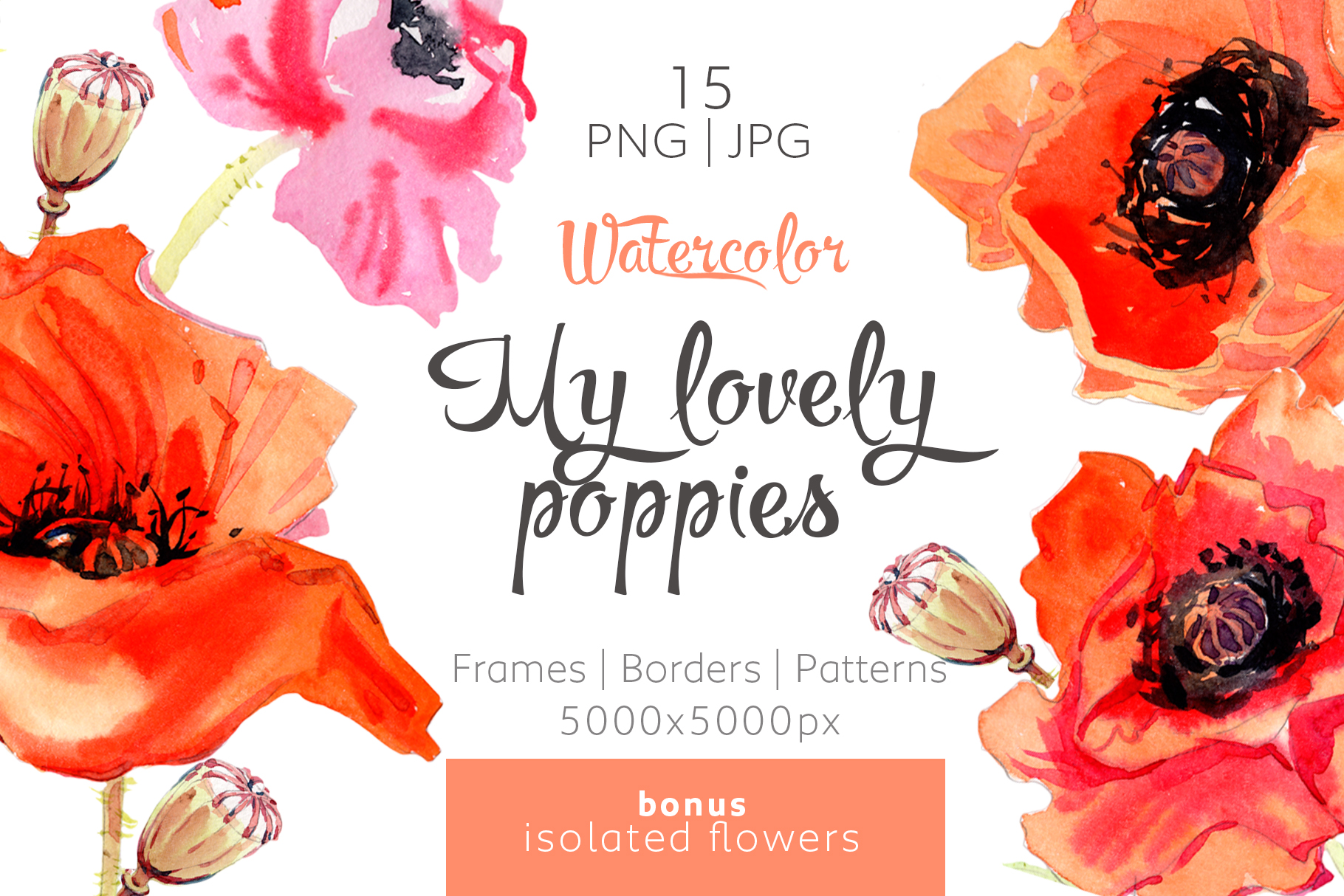 Print on Demand: My Lovely Poppies PNG Watercolor Set Graphic Illustrations By MyStocks