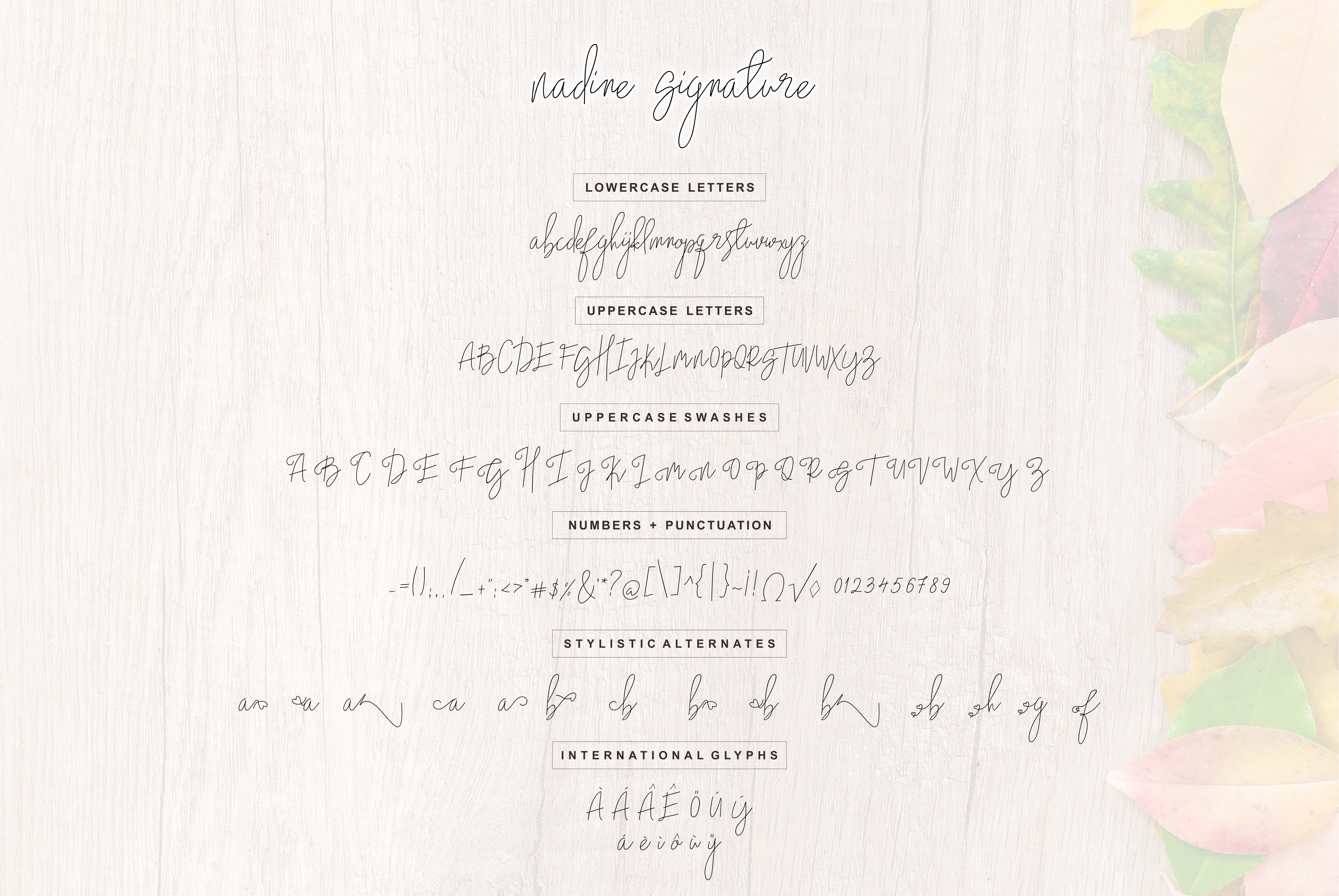 Print on Demand: Nadine Script Script & Handwritten Font By Malindo Creative - Image 6