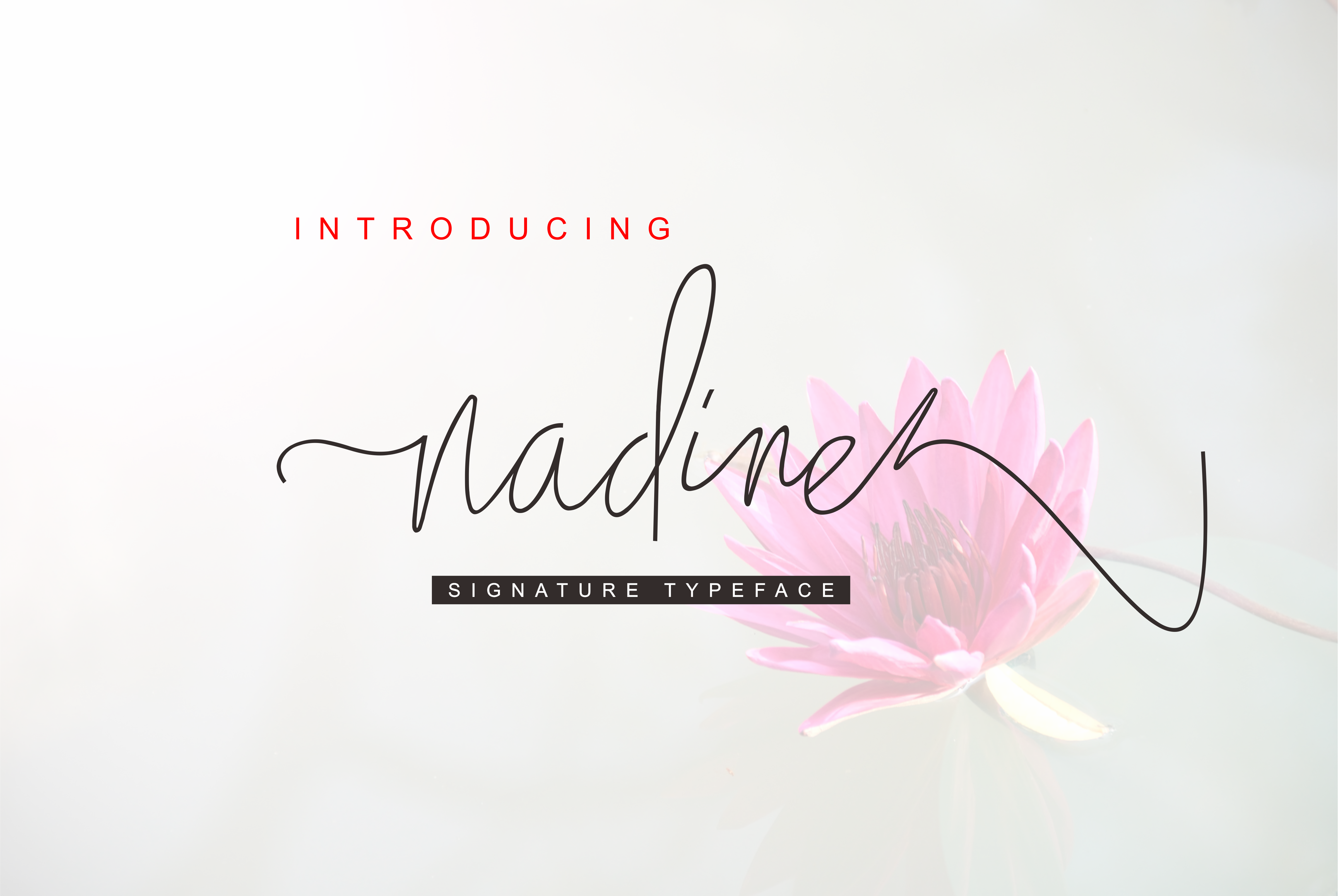 Print on Demand: Nadine Script Script & Handwritten Font By Malindo Creative - Image 1