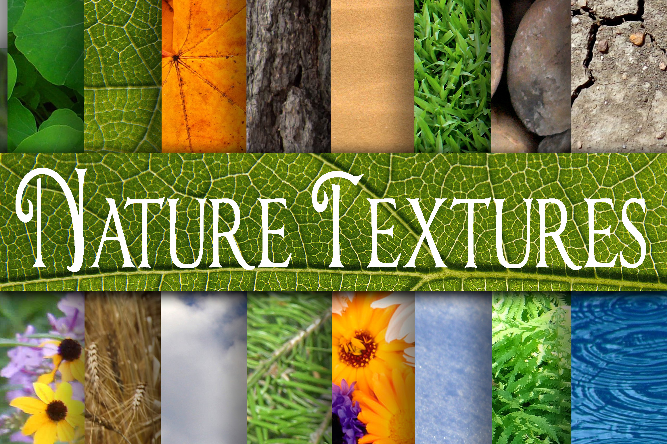 Print on Demand: Nature Textures Digital Paper Graphic Backgrounds By oldmarketdesigns