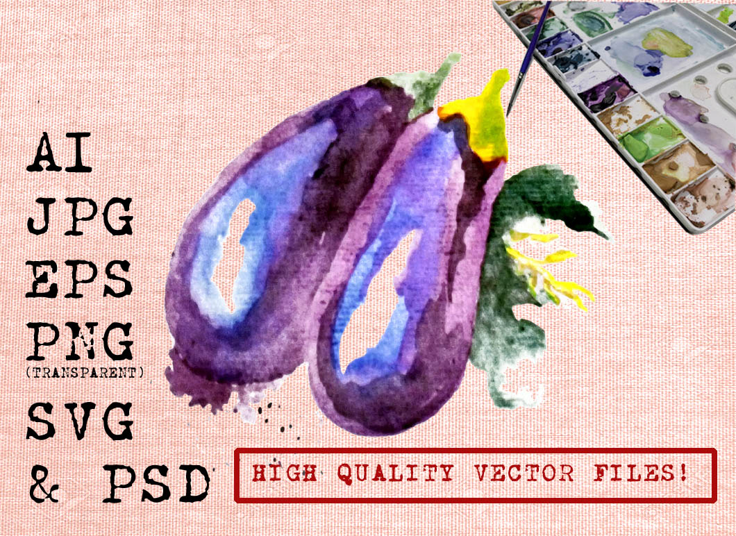 PURPLE EGGPLANTS WATERCOLOR Graphic Illustrations By Ambar Art