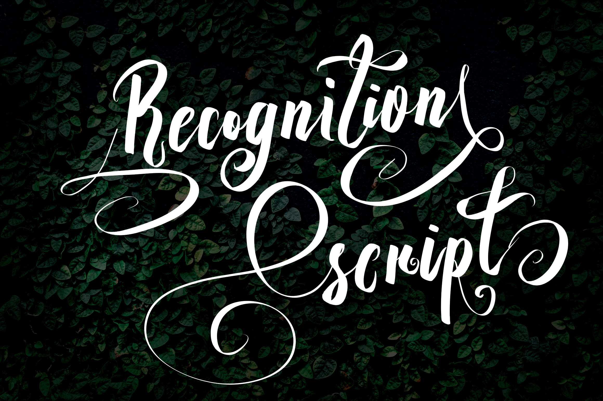 Print on Demand: Recognition Script Script & Handwritten Font By Royaltype