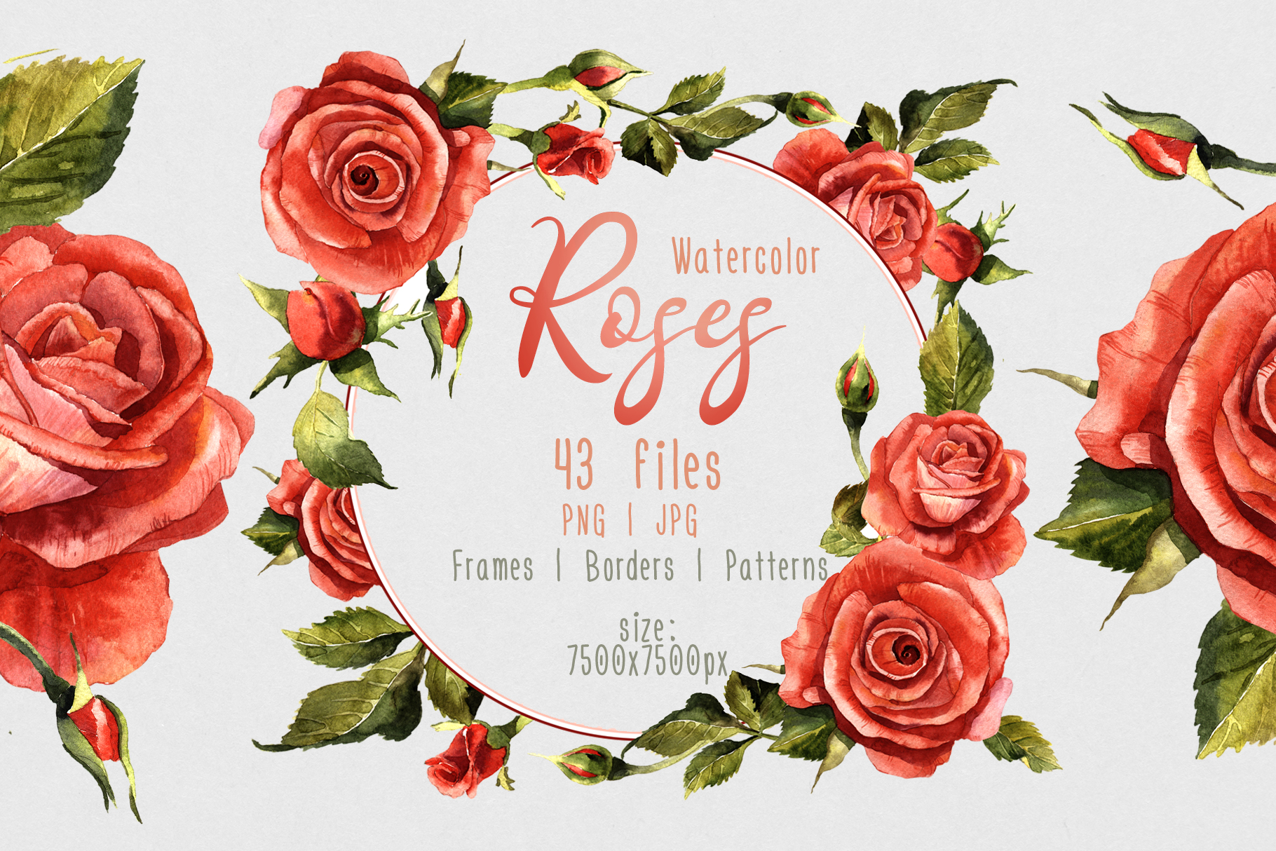 Print on Demand: Red Roses Watercolor Flower Set Graphic Illustrations By MyStocks