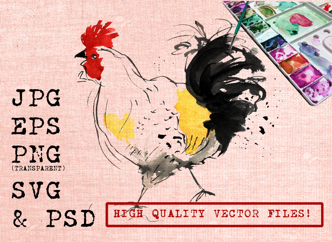 Rooster Watercolor Graphic Illustrations By Ambar Art