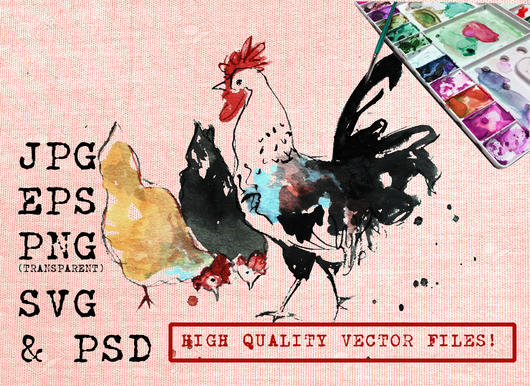 Rooster and Two Chickens Watercolor Graphic Illustrations By Ambar Art