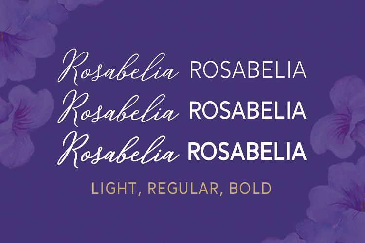 Print on Demand: Rosabelia Script & Handwritten Font By Solidtype - Image 11