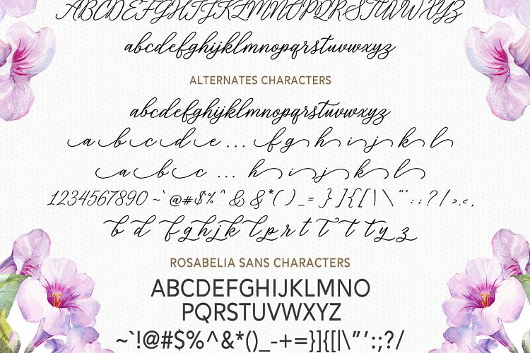 Print on Demand: Rosabelia Script & Handwritten Font By Solidtype - Image 8