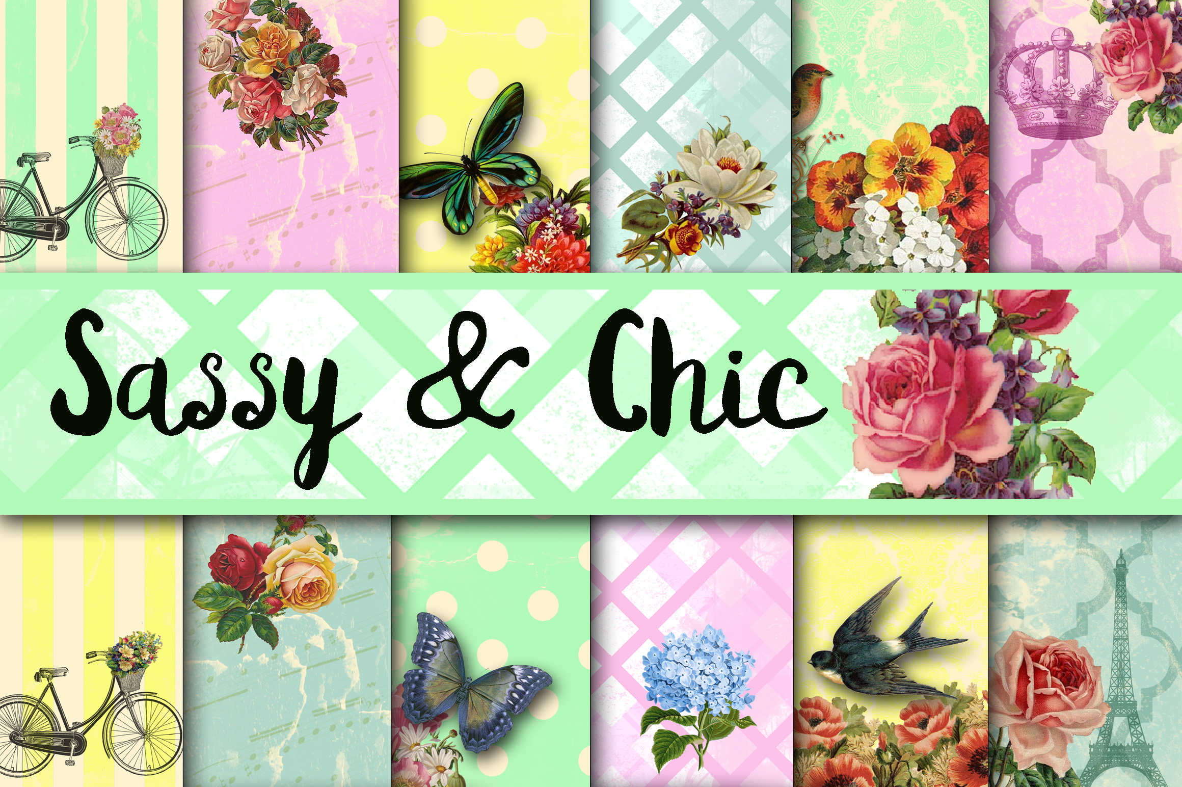 Sassy and Chic Digital Papers Graphic Backgrounds By oldmarketdesigns