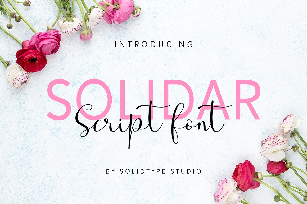 Print on Demand: Solidar Script & Handwritten Font By Solidtype - Image 2