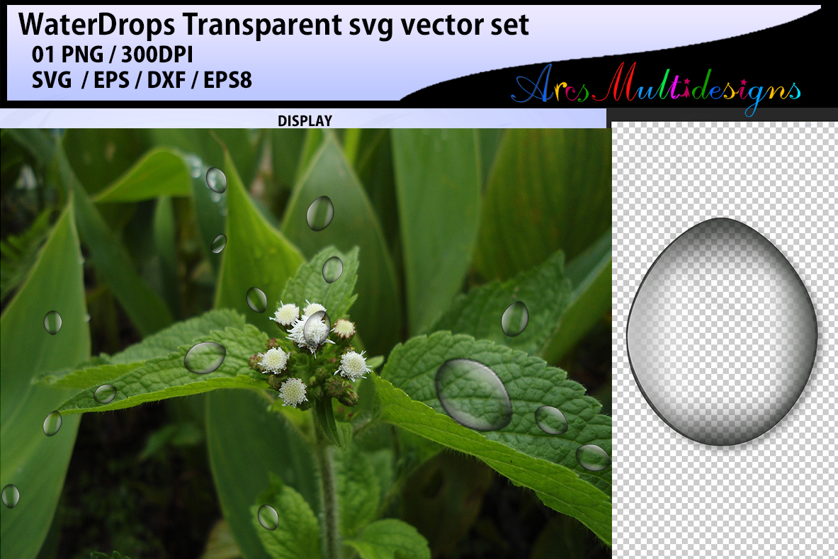 Print on Demand: Transparent Water Drops Graphic Illustrations By Arcs Multidesigns